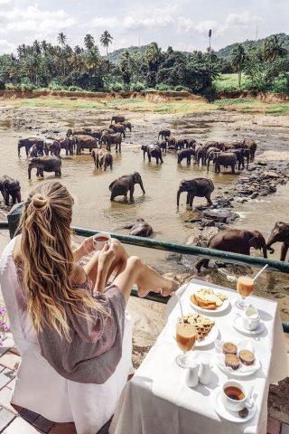 Egzotyczna podróż poślubna - Sri Lanka - zdjęcie 1