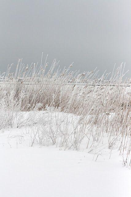 Podróż poślubna w zimie - 11
