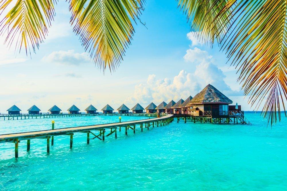 Podróż poślubna - Malediwy