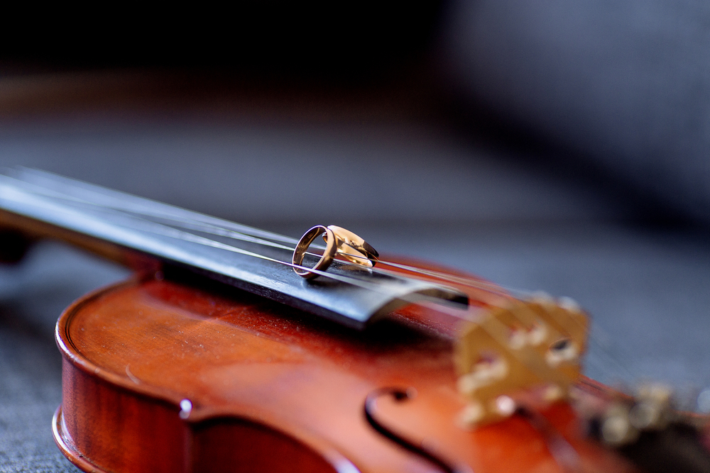 Oprawa muzyczna ślubu plenerowego - zdjęcie 1