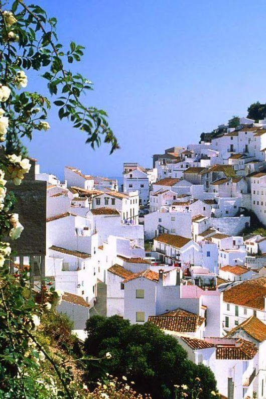 Podróż poślubna Costa del Sol - zdjęcie 2