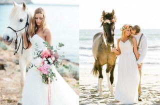Sesja ślubna z końmi - zdjęcie 3