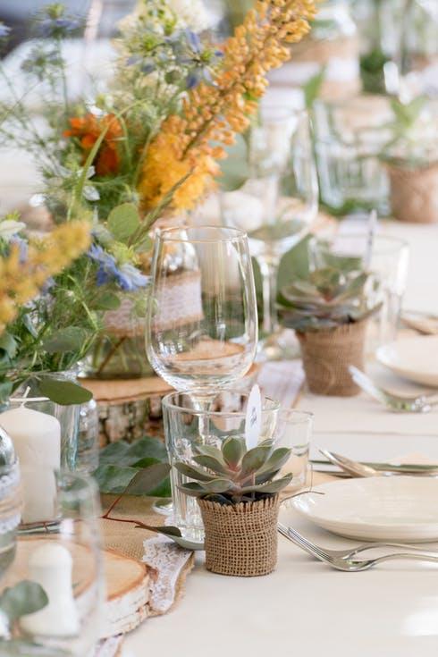 sukulenty w doniczkach dla gości weselnych