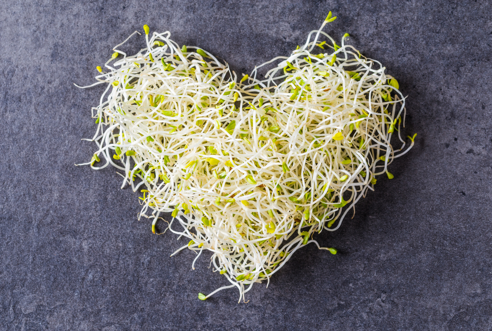 Zdrowe odżywianie - nie tylko przed ślubem - zdjęcie 4
